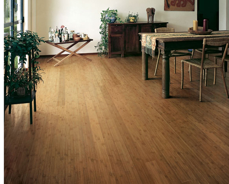Eco-Friendly Hardwood Floors for a Green Home